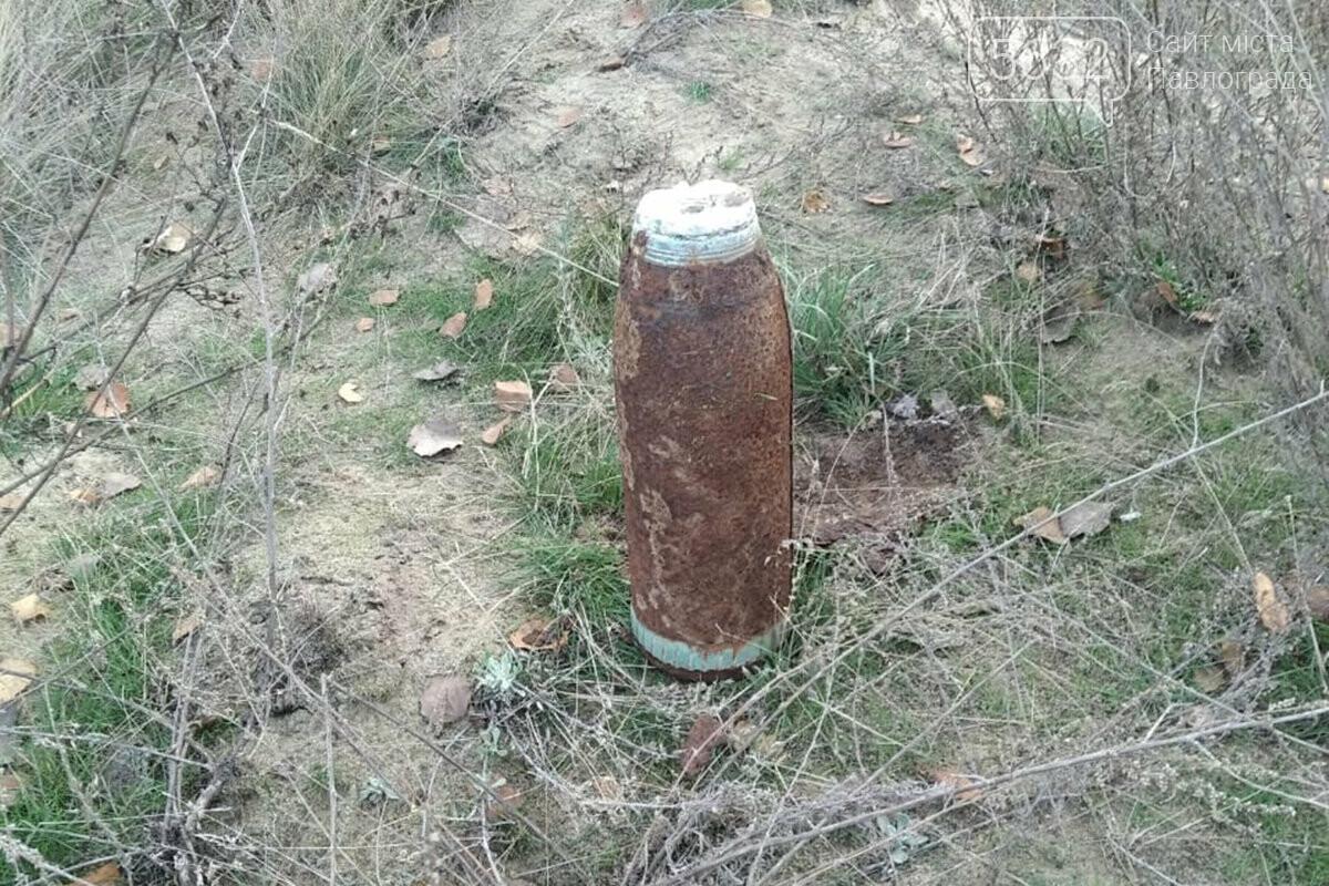 Недалеко от Павлограда нашли устаревшие боеприпасы, фото-2