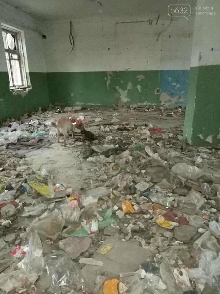 В Павлограде пятый день ищут пропавшую Ольгу Синеокую-Осауленко, фото-5