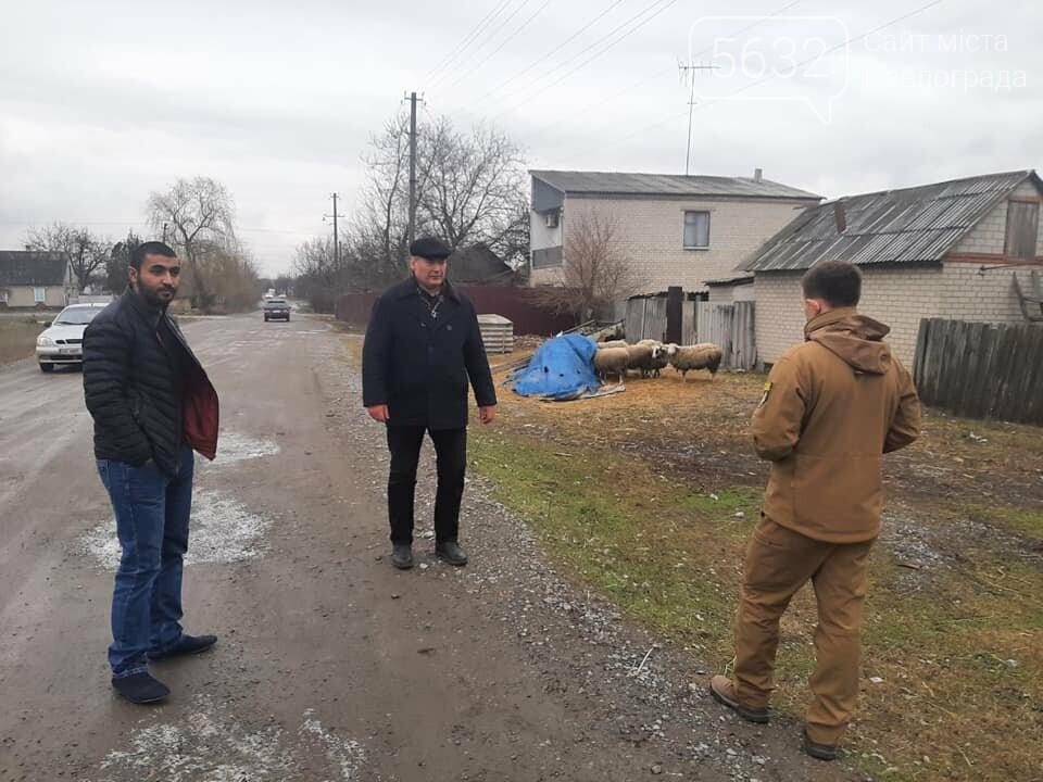 Павлоградец выпасал овец прямо на кладбище (ФОТО), фото-4