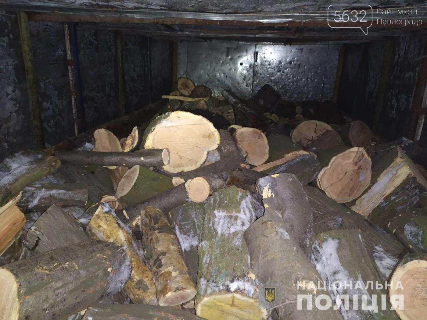 На Павлоградщине задержали «чёрного лесоруба», фото-1