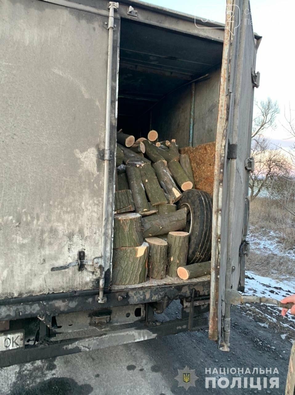 На Павлоградщине задержали «чёрного лесоруба», фото-3