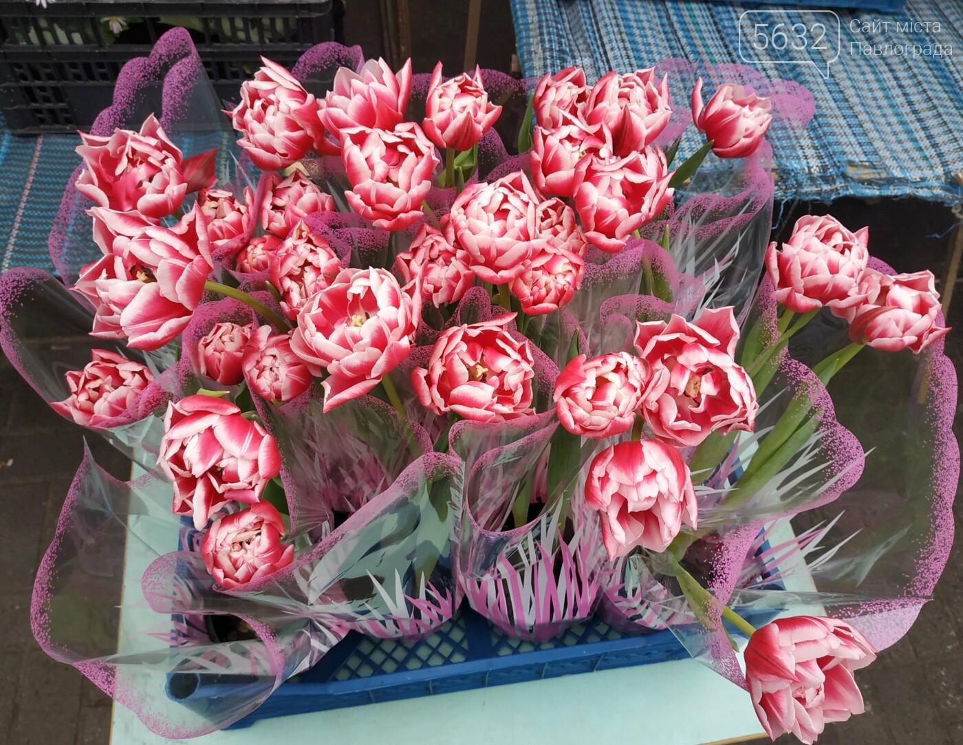 Во сколько в этом году павлоградцам обойдутся цветы к 8 марта?, фото-13