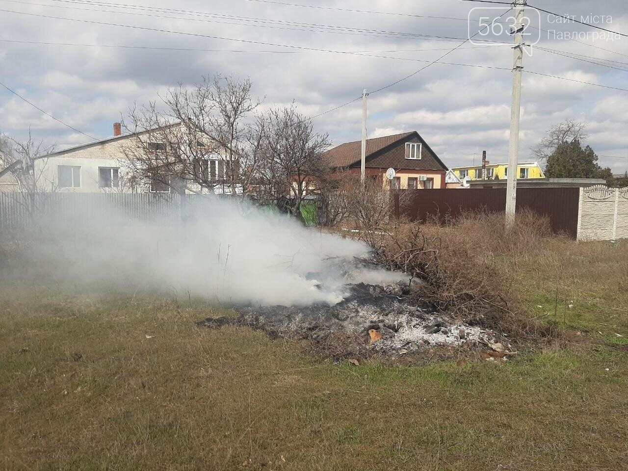 В Павлограде начались рейды по выявлению случаев сжигания сухой травы и листвы, фото-3