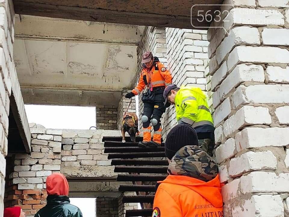 118 дней со дня исчезновения: что известно о поисках без вести пропавшей Ольги Синеокой-Осауленко?, фото-8