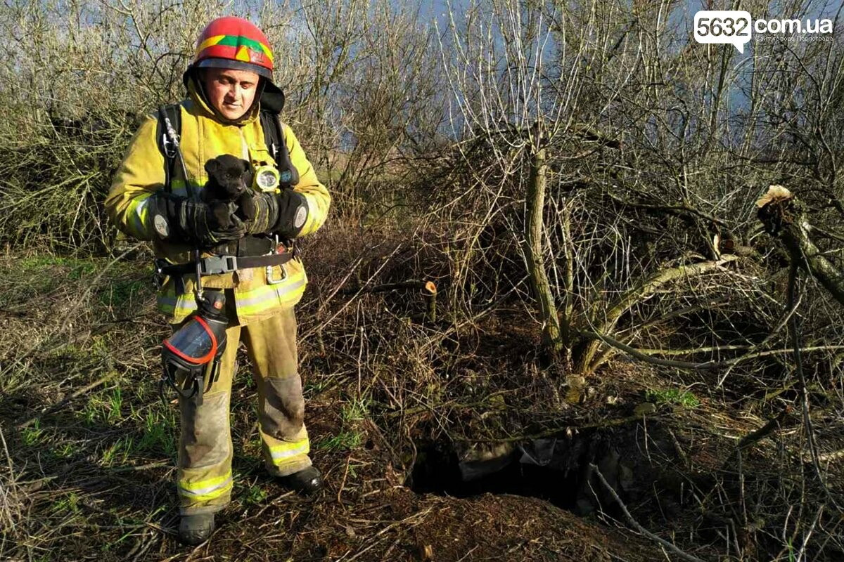 В Петропавловском районе спасатели достали щенка из 15-метрового колодца  , фото-1