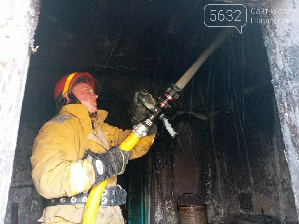 На пожаре в селе Дмитровка погибли 80 цыплят, фото-2
