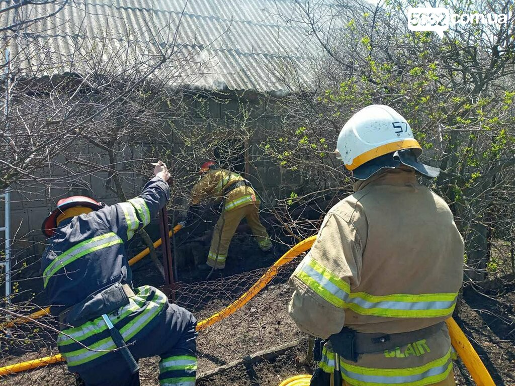 На пожаре в селе Дмитровка погибли 80 цыплят, фото-1