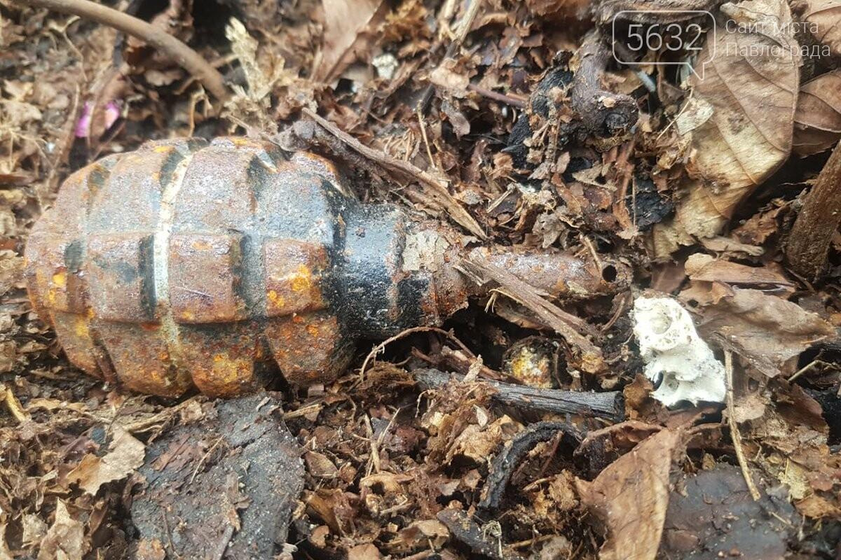 В Павлограде возле жилого дома нашли ручную гранату, фото-1