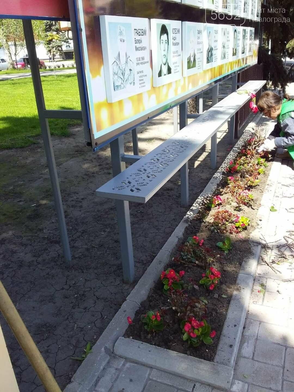 Для свадебных фотосессий в Павлограде готовят новую цветочную локацию в центре города, фото-8