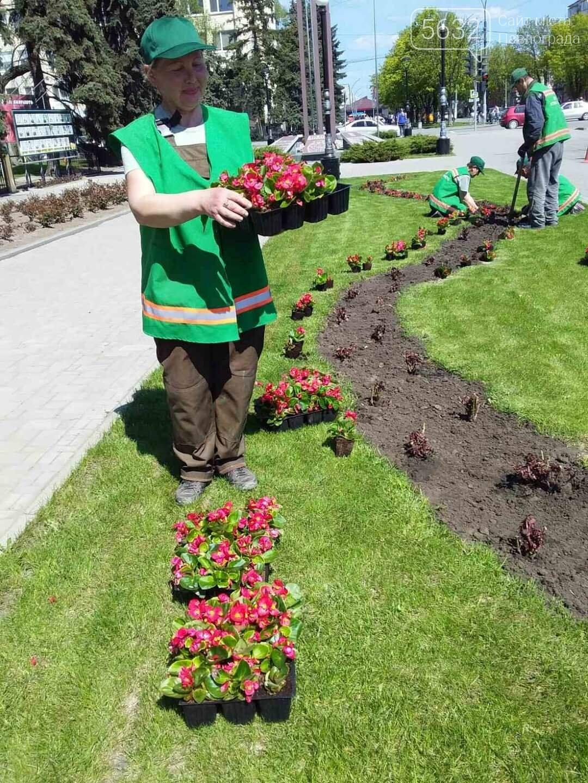 Для свадебных фотосессий в Павлограде готовят новую цветочную локацию в центре города, фото-6