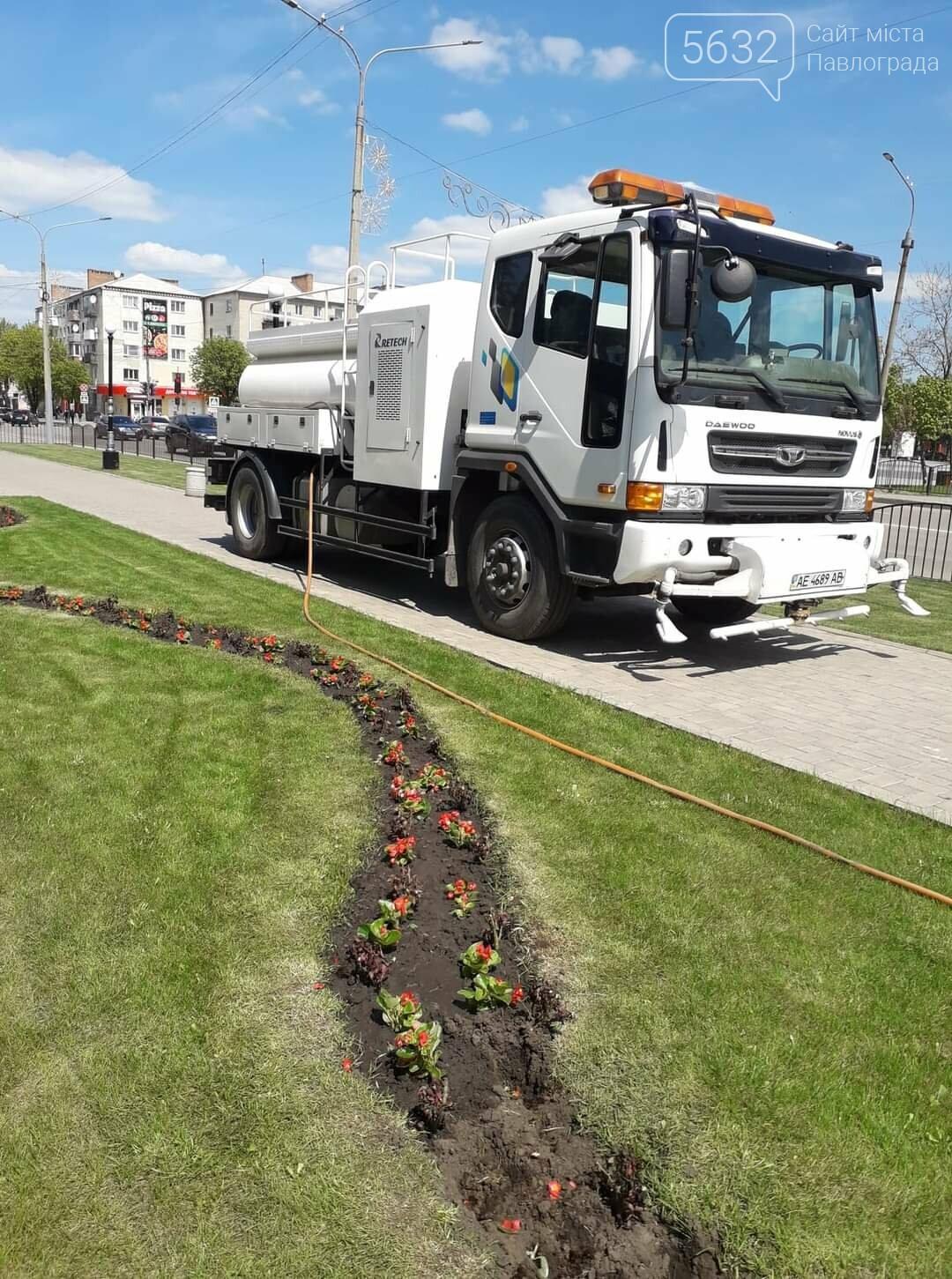 Для свадебных фотосессий в Павлограде готовят новую цветочную локацию в центре города, фото-5