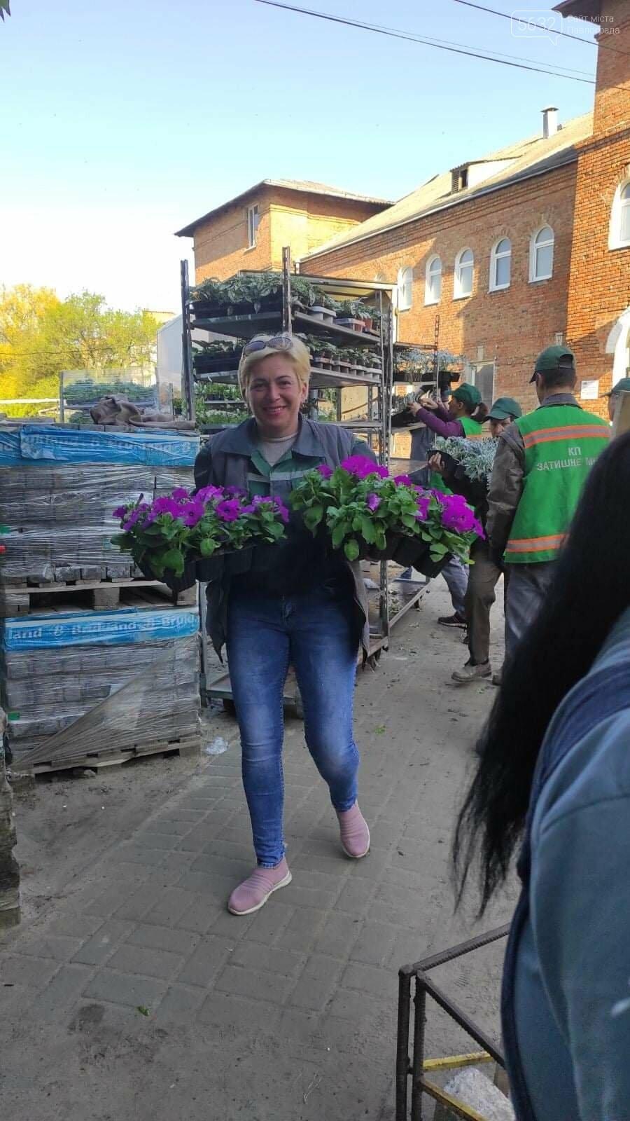 Для свадебных фотосессий в Павлограде готовят новую цветочную локацию в центре города, фото-2
