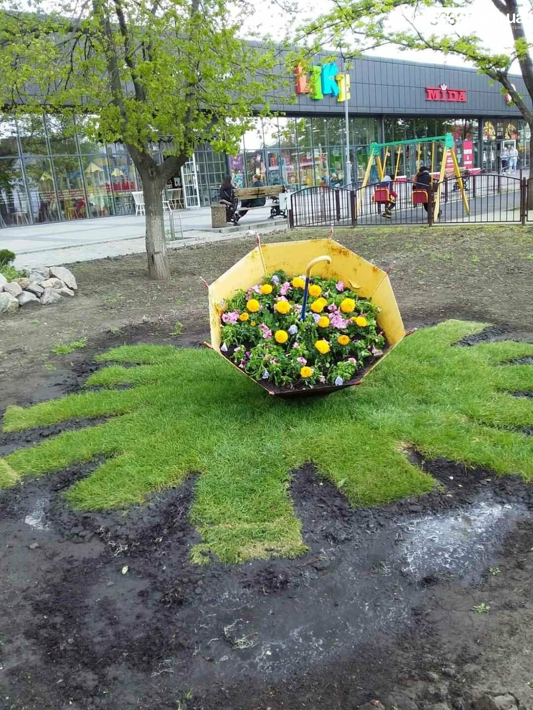 Для свадебных фотосессий в Павлограде готовят новую цветочную локацию в центре города, фото-9
