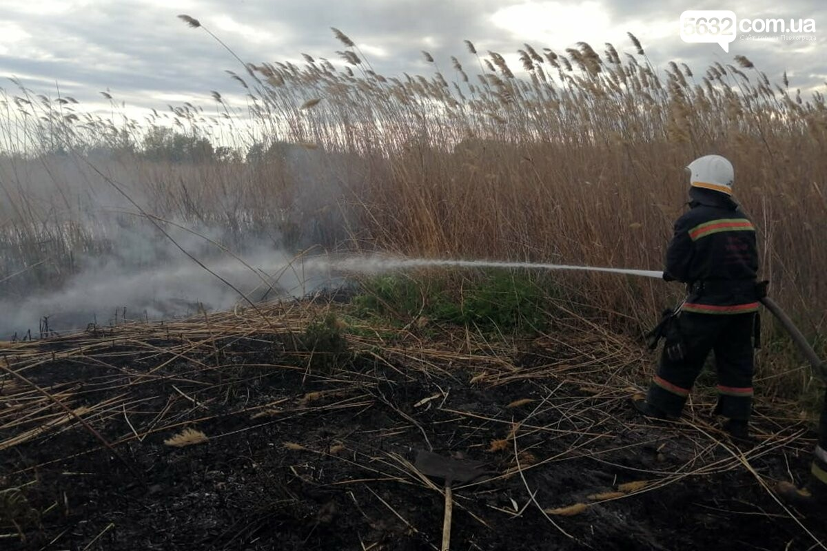 Недалеко от Богдановки выгорело 3,5 га сухостоя (ВИДЕО), фото-1