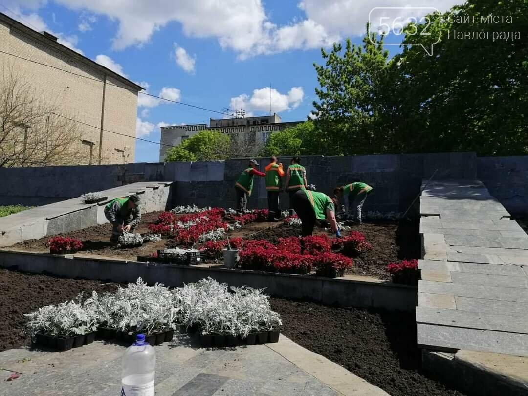 В центре Павлограда снова расцвёл трезубец (ФОТОФАКТ), фото-3