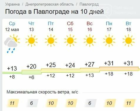 Готовьте головные уборы: в Павлоград идёт летняя жара, фото-1