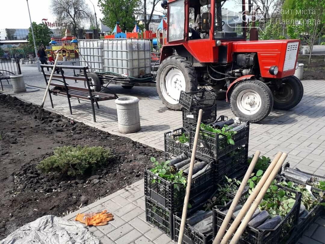 В Детском парке Павлограда проводятся работы по благоустройству (ФОТОФАКТ), фото-3