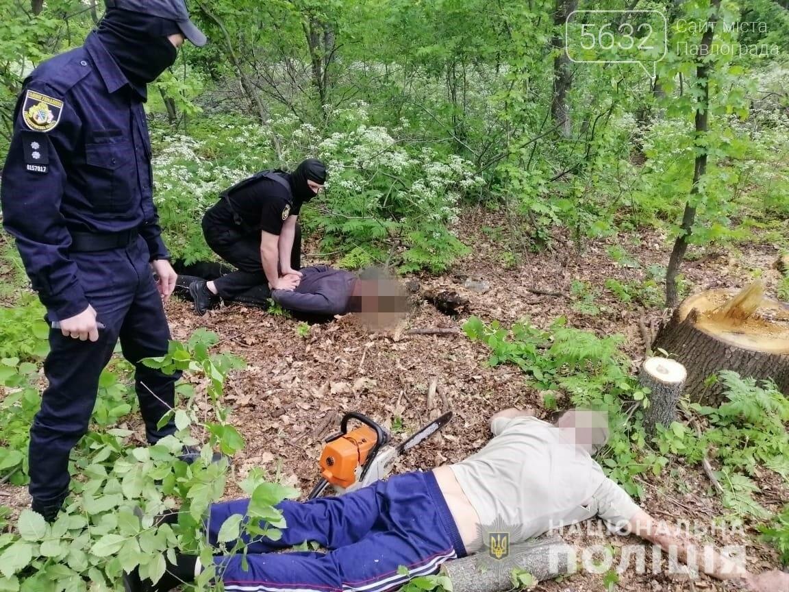 На Днепропетровщине задержали банду «черных лесорубов», фото-2