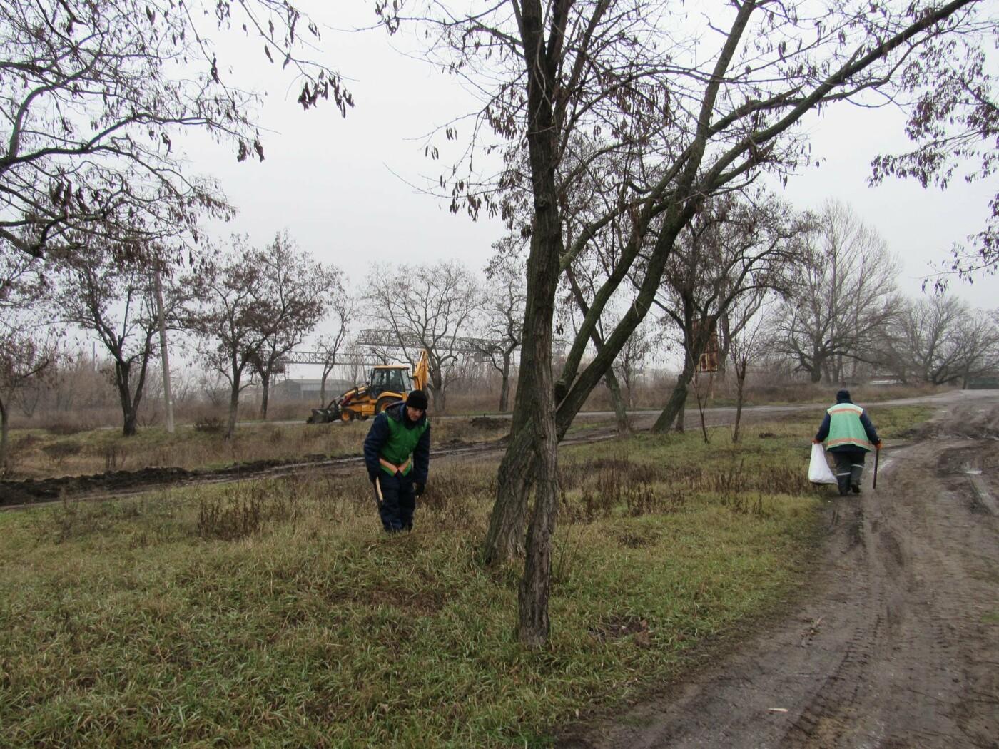 В Павлограде прошла акция по уборке одного из микрорайонов  , фото-4