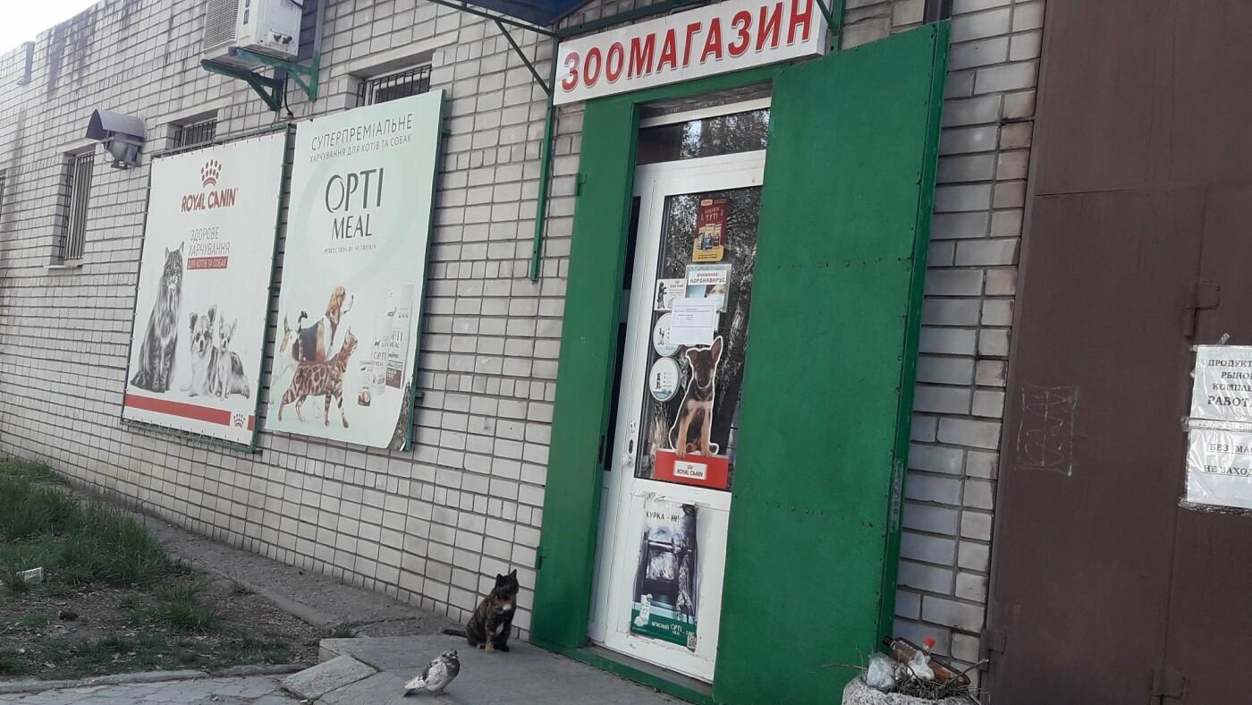 Павлоградцы делятся забавными фото в Сети на тему карантина  , фото-2